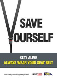 seatbelt 1